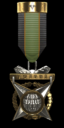 Council Medal of Honor